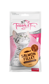 Cat Treats - Salmon Fillet